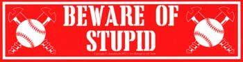 "Beware Of Stupid 11 1/2"" X 3"""