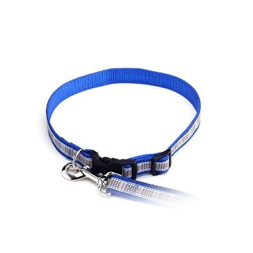 Color Pet™ Casey & Eddy Natural/Royal Collar: Medium