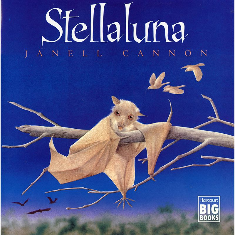 Stellaluna Big Book