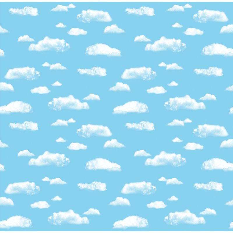 Fadeless 48 X 50 Roll Cloud Boxed