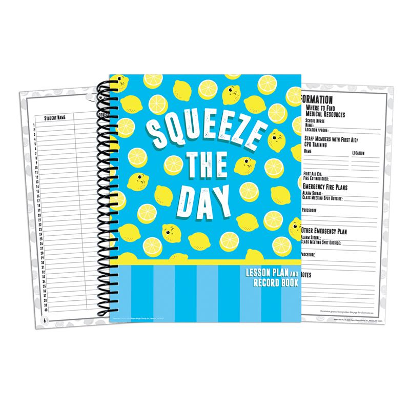 Always Try Your Zest Lesson Plan & Record Book