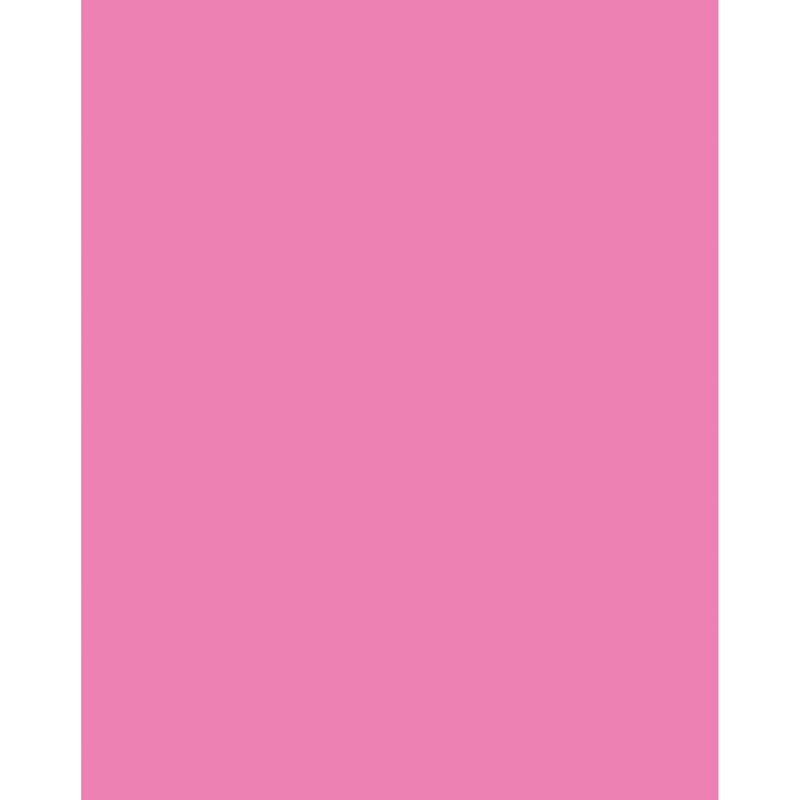 Poster Board Neon Pink 25/ct