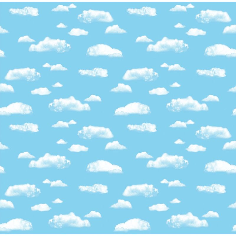 Fadeless 48X12 Cloud Sold 4Rls/Ctn
