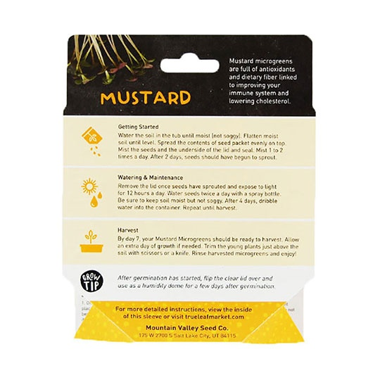 Handy Pantry Mustard Microgreen Kit