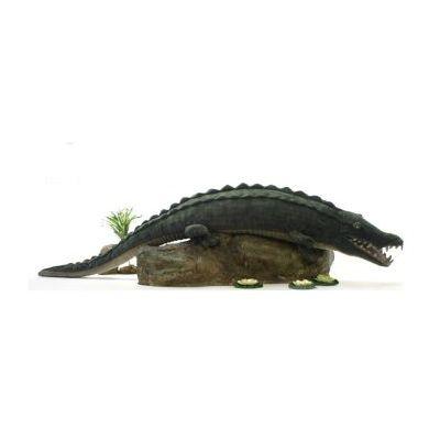 Alligator (crocodile) 100''l
