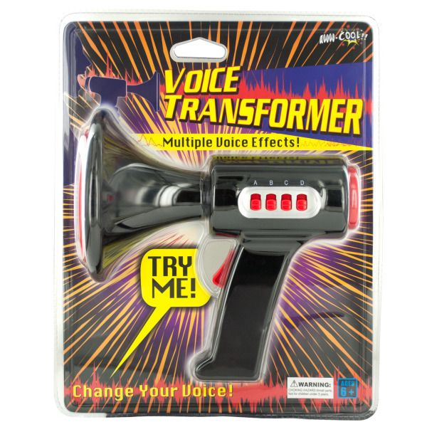Voice Transformer With Multiple Voice Effect