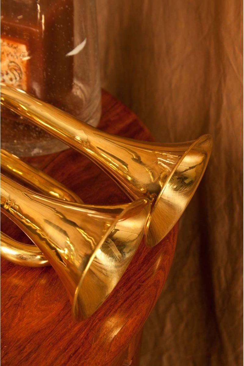 Dobani Double Bell Bulb Horn 3.75-Inch-Bell