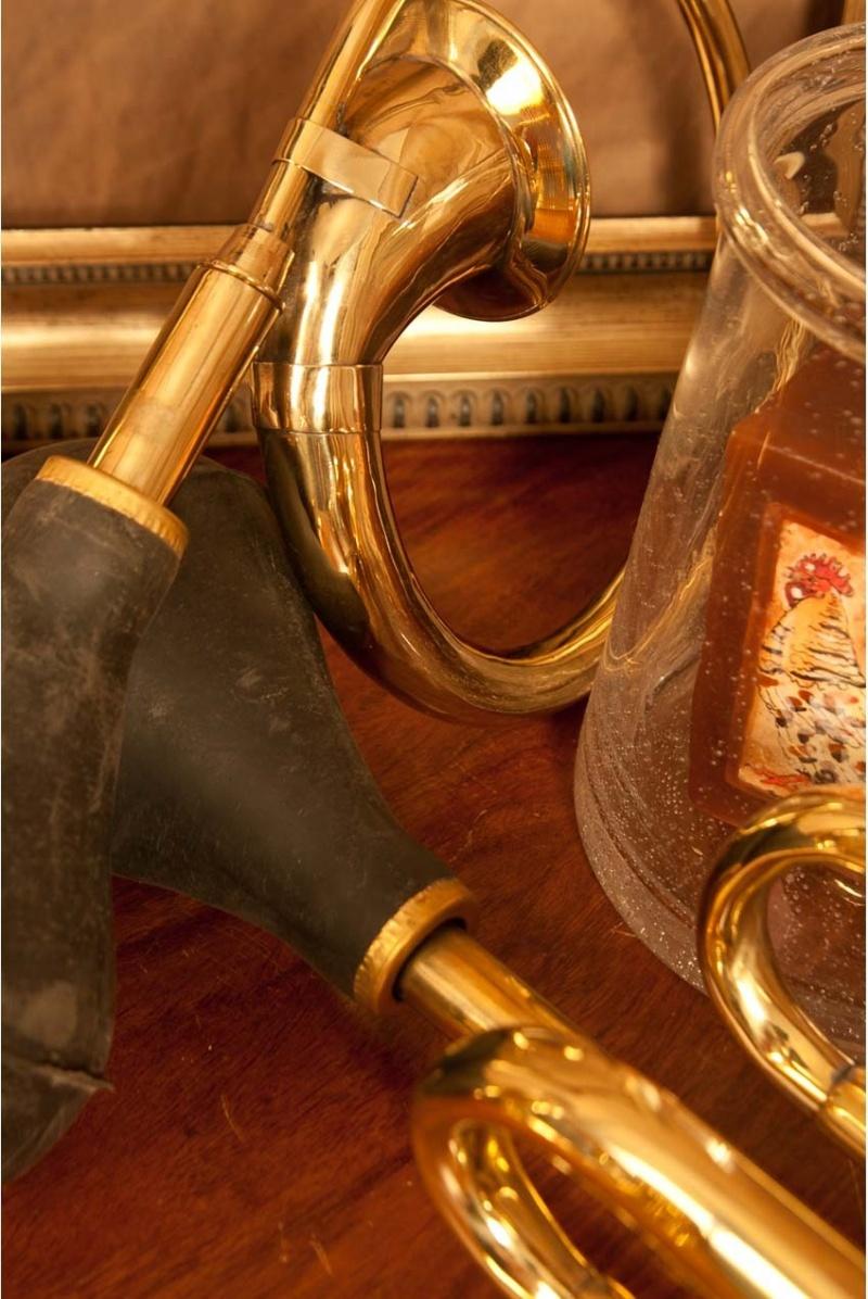 Dobani Circular Bulb Horn 2.75-inch-bell
