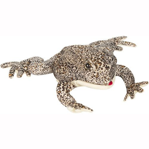 """12"""" American Toad"""